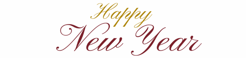 Happy New Year from the Goffstown Public Library