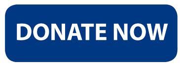 Donate now button blue