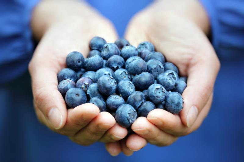 handful_fresh_blueberries.jpg