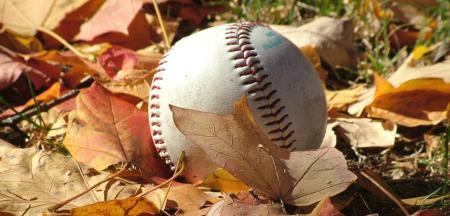 Fall Baseball