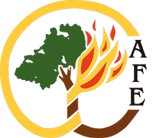 afe logo small transparent circle