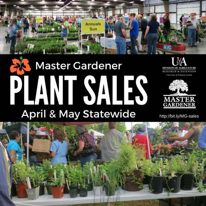 MG plant sales with logos and two photos of people at MG plant sales