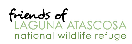 friends of laguna atascosa national wildlife refuge