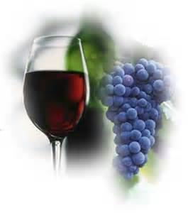 recipe: corrado wine grapes [17]