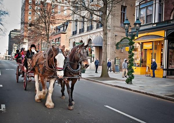 Horse Drawn Carriage at The Shops at Yale