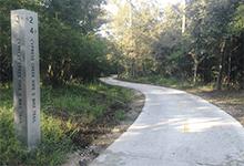 Cypress Creek Hike and Bike Trail