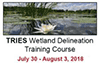 Wetland delineation training course graphic - pond with flowers