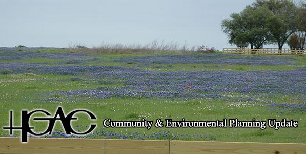 April 2018 Banner - bluebonnets in a field