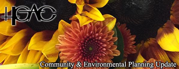 C&E November Banner - Fall Flowers