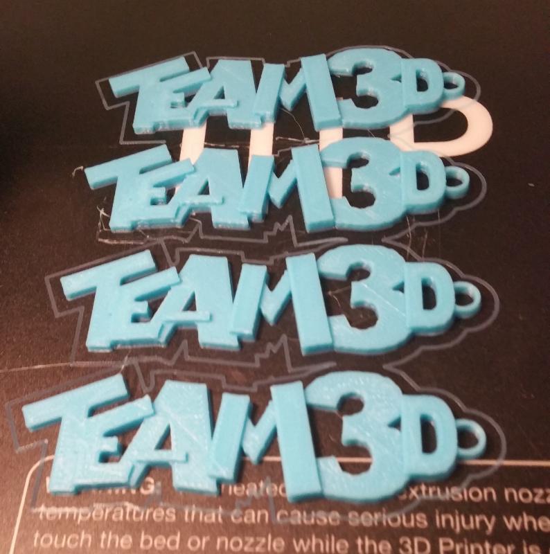 Izabel Lam Team3D key chain