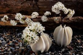 CORAL SERIES - 3D printed vases
