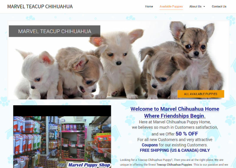 Screenshot of Marvel Teacup Chihuahua website