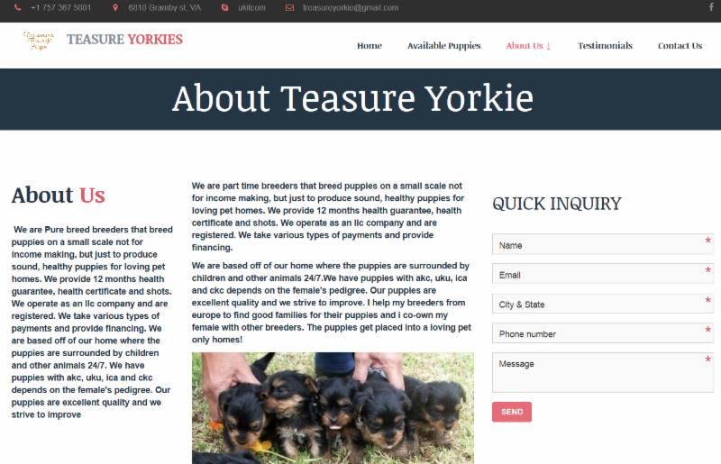 Screen shot from Treasure Yorkie's website.