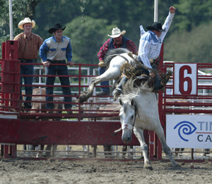 Gerry Rodeo