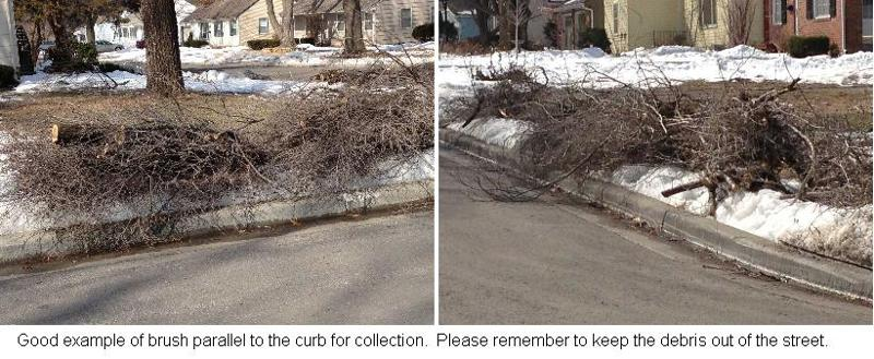 Brush at the curb for collection