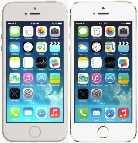 iP5S SILVER and GOLD graphic
