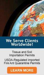 We Serve Clients Worldwide