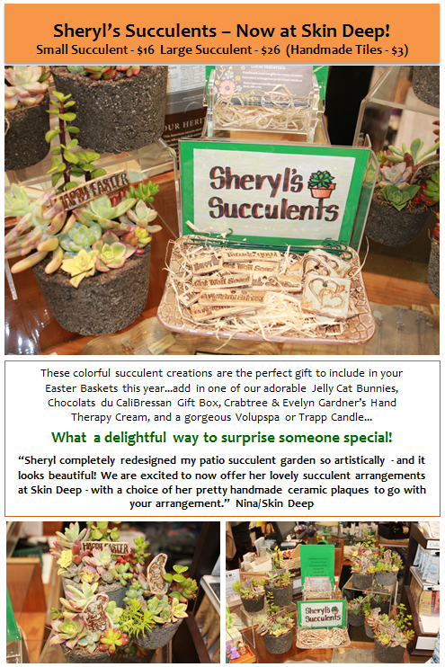 Sheryl's Succulents