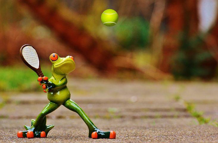 Tennis Frog