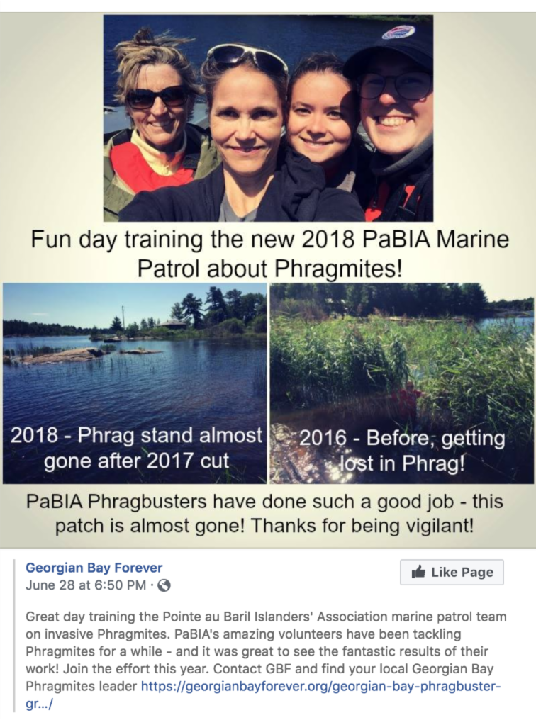 GBF Phrag Facebook pg