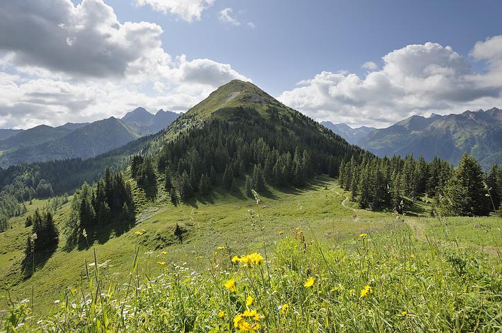 mountain_green_scenic.jpg
