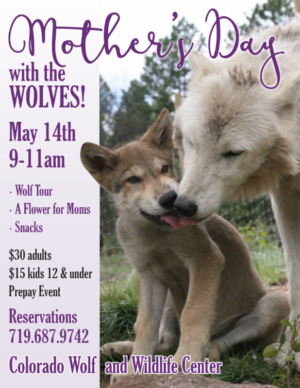 Mothers Day with the Wolves