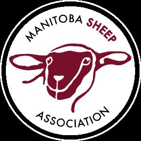 MSA Logo 2012