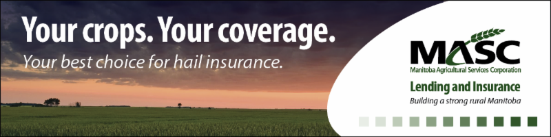 Manitoba Agricultural Services Corporation ad about Hail Insurance