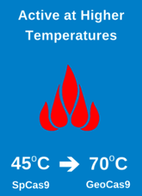 Thermostable GeoCas9