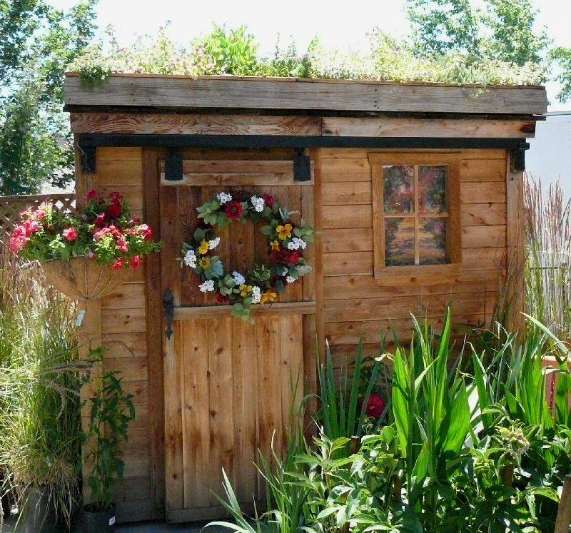 Shed and Roof Garden