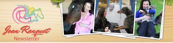 Joan Ranquet - Please visit our website