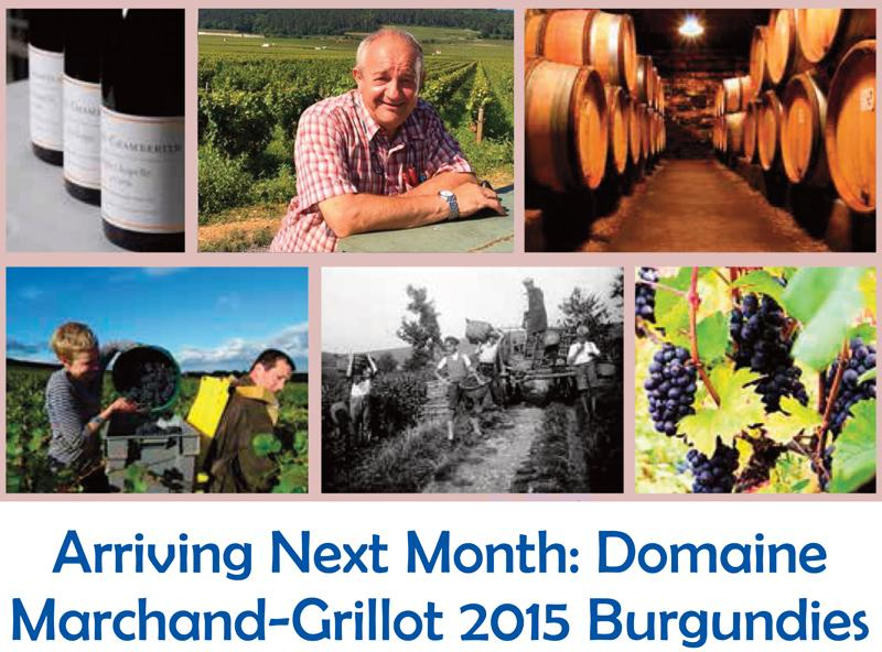 Marchand-Grillot 2015 Arriving
