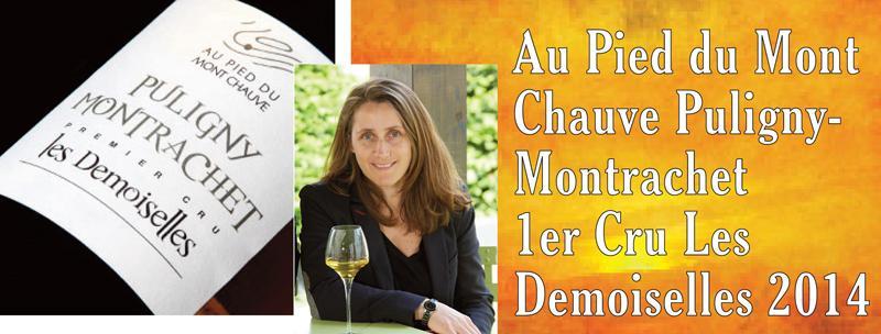Pied du Mont Chauve Demoiselles 2014 Header