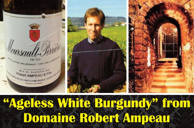 Ampeau White Burgundy Header