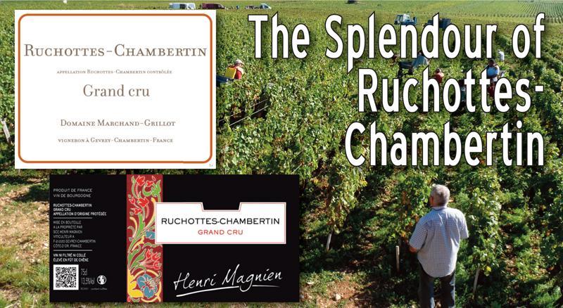 Ruchottes-Chambertin 2015 Header