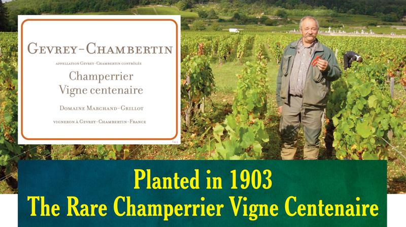 Marchand_grillot Champerrier header