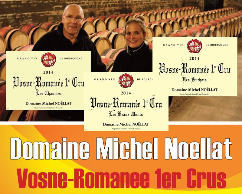 Noellat 2014 1er Crus Header