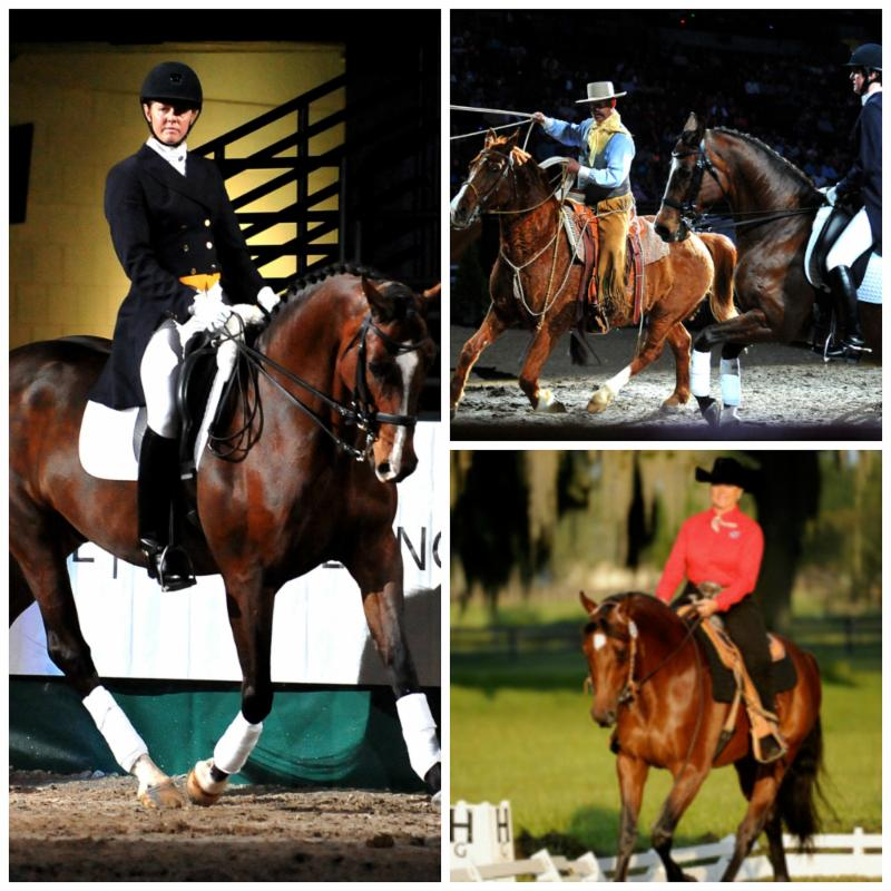 Fei World Cup Finals Omaha Dazzling Line Up Of