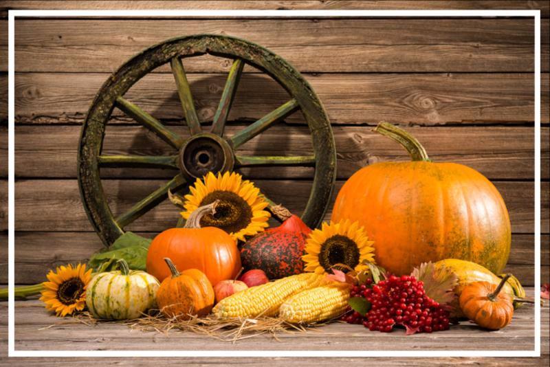 thanksgiving.jpg