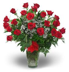 Roses, Doz in Vase