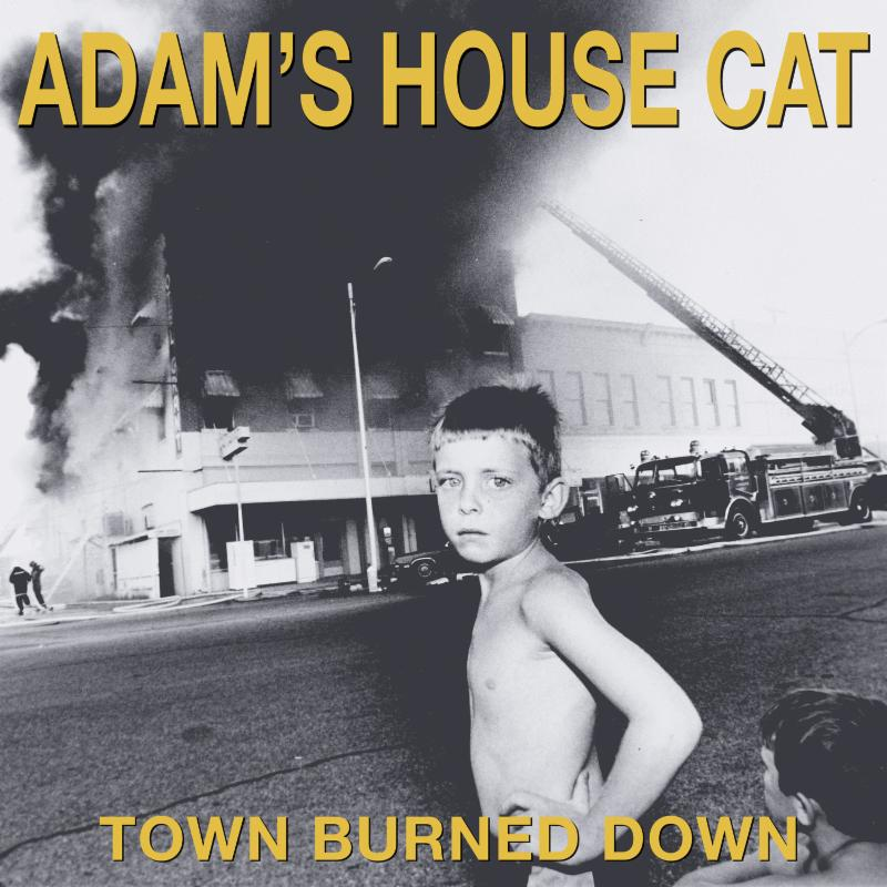 DRIVE-BY TRUCKERS FINALLY UNVEIL ADAM'S HOUSE CAT