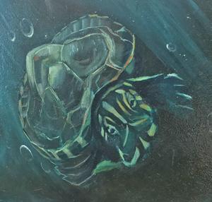 turtle art at Texas Beach