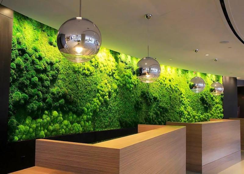 Moss Wall Art & Everything Grows: Moss Wall Art
