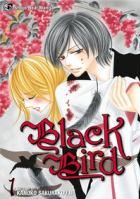 Black bird book cover