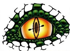 Floatzilla Logo Eye