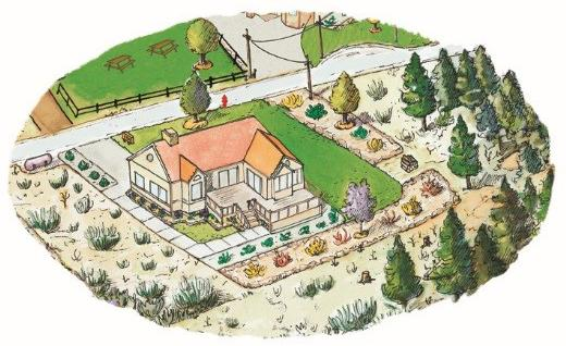 Illustration of aerial view of house and surrounding fire-adapted landscaping.