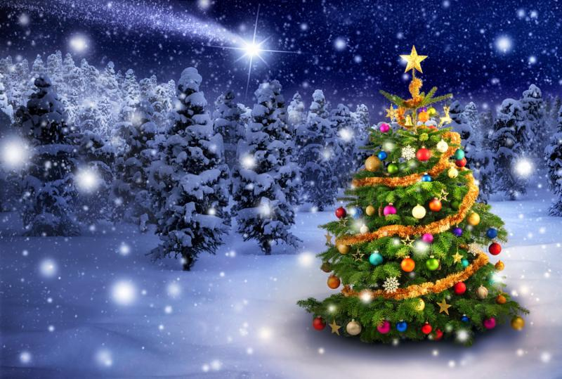 Magnificent colorful Christmas tree outdoor in a snowy night with a shooting star in the sky for the perfect Christmas mood