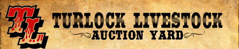 Turlock Livestock Auction Yard