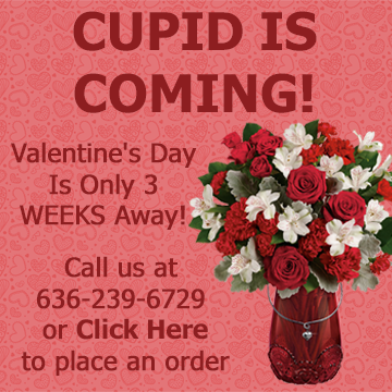 Cupid is Coming - Valentines Day is only 3 weeks away. Call 636-239-6729 or visit www.hillermannflorist.com