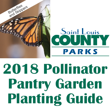 St. Louis County Parks 2018 Pollinator Pantry Garden Planting Guide - Click for document